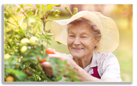 assisted living senior amenities san juan